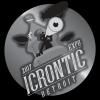 Expo Icrontic 2017
