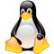 Linux Expert